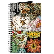 Unique Shelling Journal