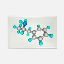 le - Rectangle Magnet (10 pk)