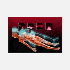 ptual artwork - Rectangle Magnet (10 pk)