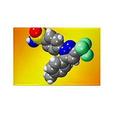 Celecoxib molecule - Rectangle Magnet (10 pk)