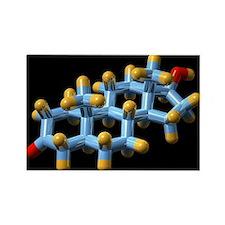 model - Rectangle Magnet (10 pk)