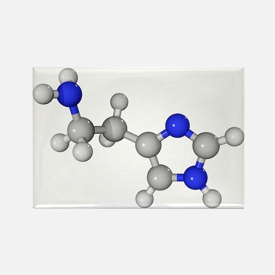 Histamine molecule - Rectangle Magnet (10 pk)