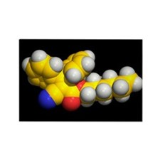 Octocrylene molecule - Rectangle Magnet (10 pk)