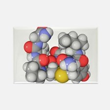 er molecule - Rectangle Magnet (10 pk)
