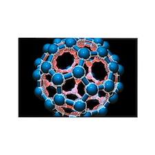 lecule, artwork - Rectangle Magnet (10 pk)