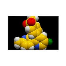 atory molecule - Rectangle Magnet (10 pk)