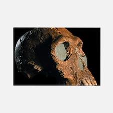 Homo habilis skull - Rectangle Magnet (10 pk)