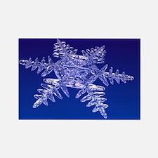 Snowflake, artwork - Rectangle Magnet (10 pk)
