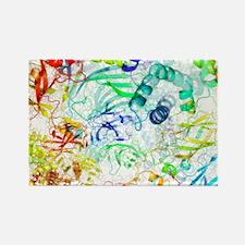 proteins, artwork - Rectangle Magnet (10 pk)