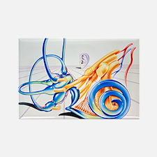 Artwork of inner ear - Rectangle Magnet (10 pk)