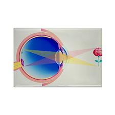 on demonstrating vision - Rectangle Magnet (10 pk)