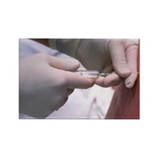 epidural anaesthetic - Rectangle Magnet (10 pk)