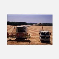 Wheat harvest - Rectangle Magnet (10 pk)