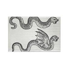 Woodcut of two dragons - Rectangle Magnet (10 pk)