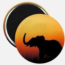 "Elephant at Sunset 2.25"" Magnet (100 pack)"