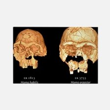 uter images - Rectangle Magnet (10 pk)