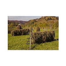 Romania - Rectangle Magnet (100 pk)