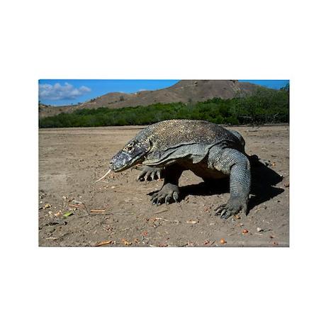 Komodo dragon - Rectangle Magnet (100 pk)