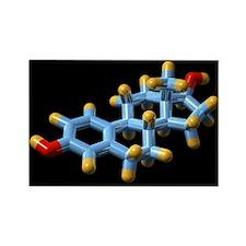 lecular model - Rectangle Magnet (100 pk)
