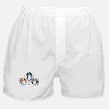 Parti Pomeranians Boxer Shorts
