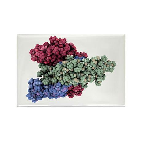 rmone molecule - Rectangle Magnet (100 pk)