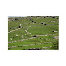 , Yorkshire Dales - Rectangle Magnet (100 pk)