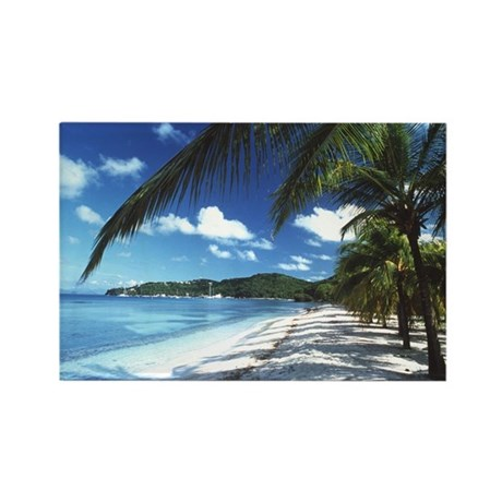 Beach with palm trees - Rectangle Magnet (100 pk)