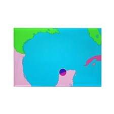 on of Chicxulub crater - Rectangle Magnet (100 pk)
