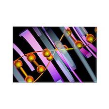 DNA - Rectangle Magnet (100 pk)