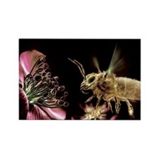 er artwork - Rectangle Magnet (100 pk)