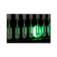 Halogen bulbs - Rectangle Magnet (100 pk)