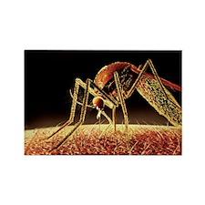 , computer artwork - Rectangle Magnet (100 pk)
