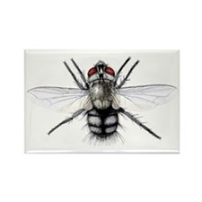 Parasitic fly - Rectangle Magnet (100 pk)