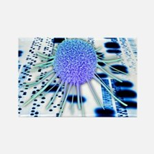 Cancer research - Rectangle Magnet (100 pk)