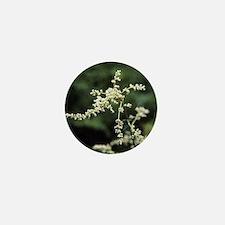 Artemisia flowers - Mini Button