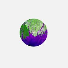 Ganges Delta - Mini Button