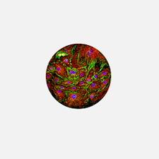 Cell structure - Mini Button