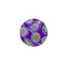 LM of an assortment of radiolaria - Mini Button