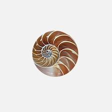 Nautilus shell - Mini Button