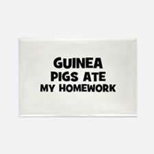 Guinea Pigs Ate My Homework Rectangle Magnet