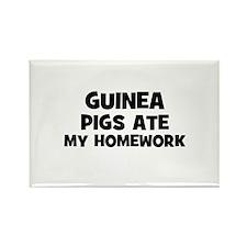 Guinea Pigs Ate My Homework Rectangle Magnet (10 p