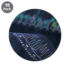 DNA analysis - 3.5