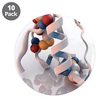 Insulin molecule - 3.5