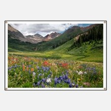 Alpine flowers in Rustler's Gulch - Banner
