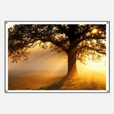 Oak tree at sunrise - Banner