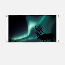 Aurora borealis and caribou - Banner