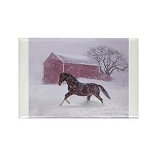 horse ornament Magnets