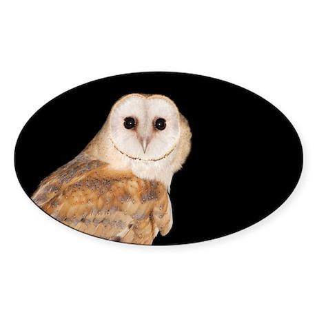 Barn owl at night - Sticker (Oval 10 pk)