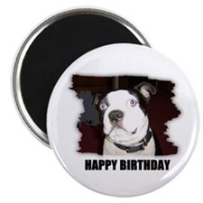 HAPPY BIRTHDAY BOSTON TERRIER Magnet