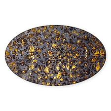 Pallasite meteorite - Decal